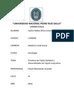 UNIVERSIDAD NACIONAL PEDRO RUIZ GALL3