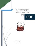 guia pedagogica quinto año