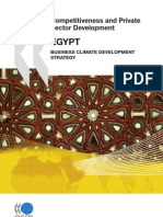 Competitiveness and Private Sector Development-Egypt 2010-2510041e