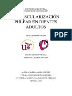 TFG MARIA FABERO.pdf