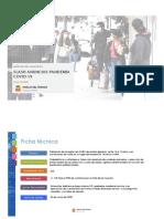Informe Flash Anuncios Covid-19.