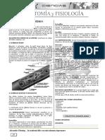 10 - ANATOMIA Y FISOL.docx