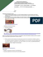 ACTIVIDAD VIRTUAL 3 11º CEC (1)