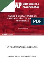 PPT DE ESTANDARES.pdf2.pdf