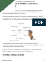 ¿Qué es un Mapa de Araña_ Características Más Destacadas - Lifeder.pdf
