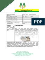 PLANEACION PEDAGOGICA CUARTA  SEMANA DE JUNIO (3)