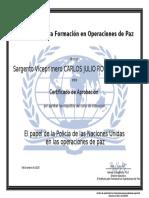 6.6 DIPLOMA - PAPEL DE LA POLICÍA DE LAS NACIONES UNIDAS EN LAS OPERACIONES DE PAZ