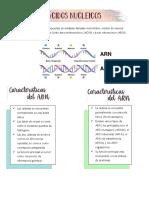 Acidos nucleicos y sintesis de proteina (1).pdf