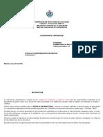 EJEMPLO_DE_CONSIGNA_MAESTRIA_1_1.docx