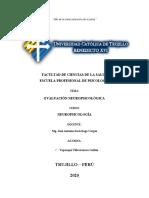 Evaluación Neuropsicológica - Organizador Visual