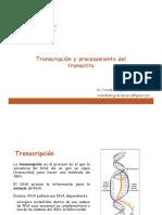 (03) Transcripcion - FARM601 - 20200319