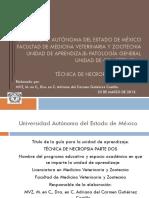 patologia del corazon.pdf