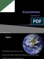 9-Ecossistemas aquaticos