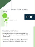 AULA 004. Fito e Qualidade Água_TURMA.pdf