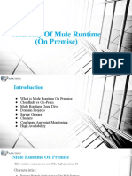 Anotomy of Mule RunTime (On Premise).pptx