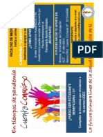 CAMPANA_CUENTA_CONMIGO.pdf