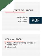Concepts of Labour