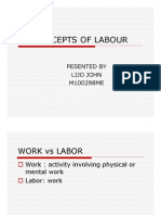Concepts of Labour
