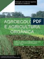 agroecologia_e_agricultura_organica_1462969754