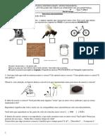 Ciencias 7C Atividades Adap1