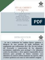 CARNICOS (2).pptx