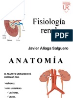 3.- F. RENAL.ppt