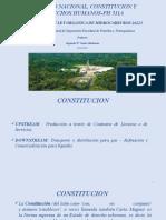 CONSTITUCION Y LOH 26221