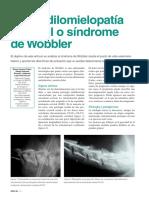 Wobbler-ATVs.pdf