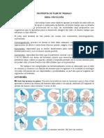 proyecto psicologia cuarentena pdf
