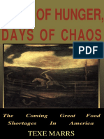 Days of Hunger, Days of Chaos- Texe Marrs