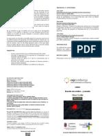 T041_Escuela cerebro corazon.pdf