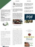 Triptico Orula.pdf