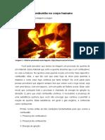Combustão no corpo humano.docx 9º ano 08 de junho