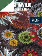 Pequeña Flor - Iosi Havilio (1)