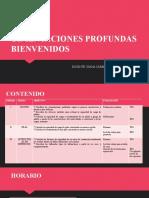 CIMENTACIONES PROFUNDAS-BIENVENIDA (1)