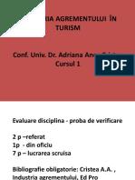 INDUSTRIA AGREMENTULUI-CURS 1-ANCA CRISTEA-AN II IFR
