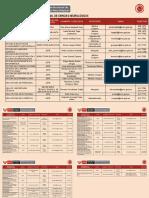 Directorio Institucionalok.pdf