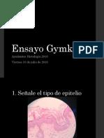 ensayo-gymkana-160610021711.pdf