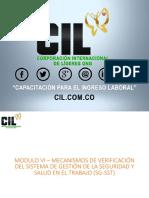 Modulo-VI-Mecanismos-de-Verificación-del-SG-SST