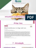 Intolerância Alimentar - Cães e Gatos