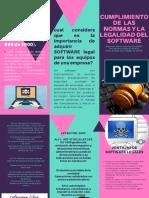 FOLLETO - cumplimiento de normas de software