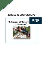 NORMAS DE COMPETENCIA EDUCADOR COMUNITARIO
