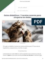 Recetas caseras para gatos diabéticos