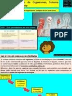UNIDAD-Nº2-Niveles-de-organización-biológica_Ciencias_Quinto (1)