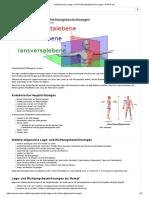 Anatomische Lage- und Richtungsbezeichnungen - MTA-R.de