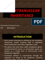 Extra Nuclear Inheritance