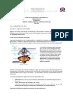 ALBERTO centrales electricas (2)