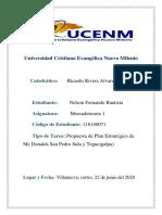 Plan estrategico, Nelson Fernando Bautista, 118140071