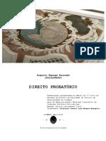 Direito probatorio MASTERMIND.pdf