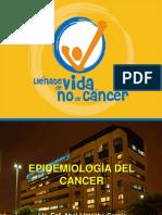 EPIDEMIOLOGIA DEL CANCER ALG2011.pdf
